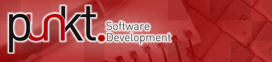 punkt Software Development
